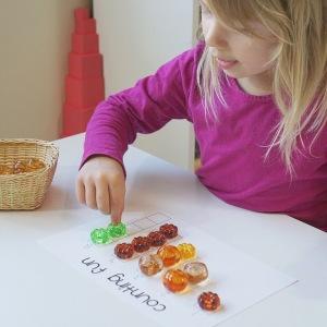 Actividad de matemáticas con calabazas Montessori preescolar