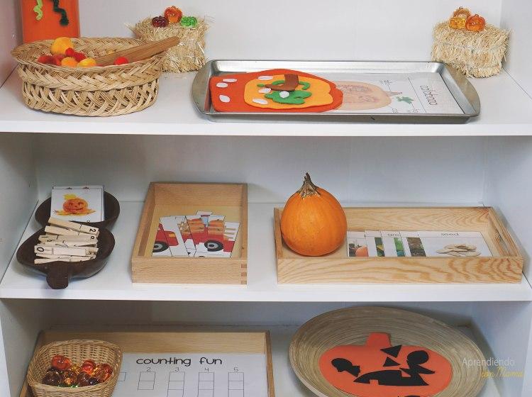 actividades Montessori tema calabazas mes de octubre