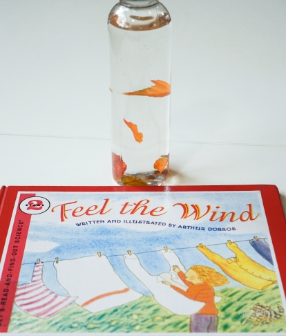 Weather theme bottles for learning. Montessori Kids activities